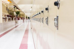 school security solutions