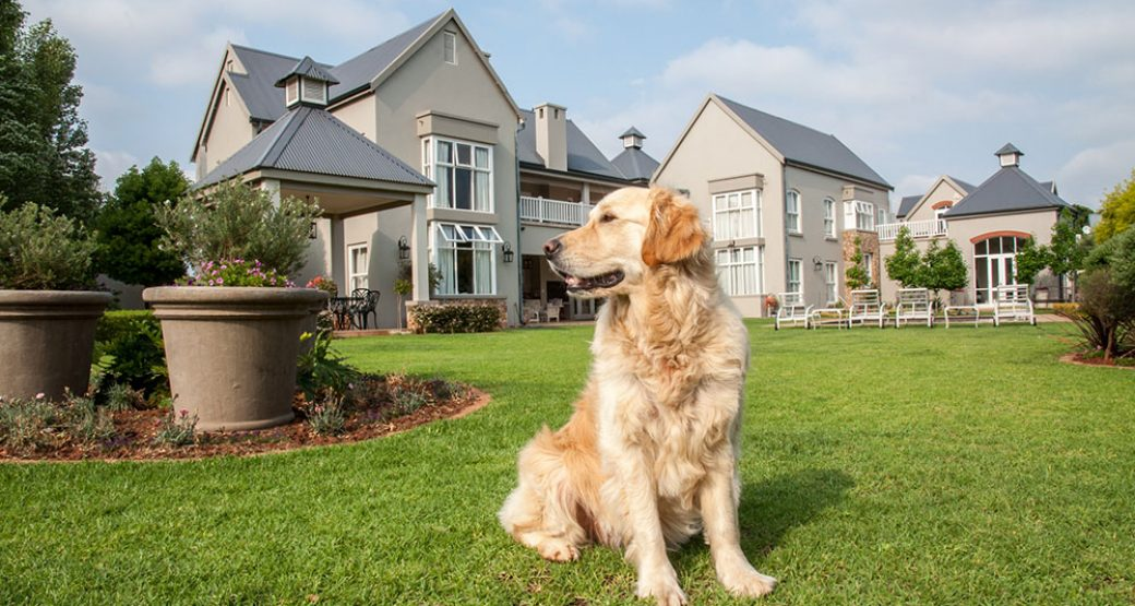 Get Complete Home Protection With These Backyard Security Tips