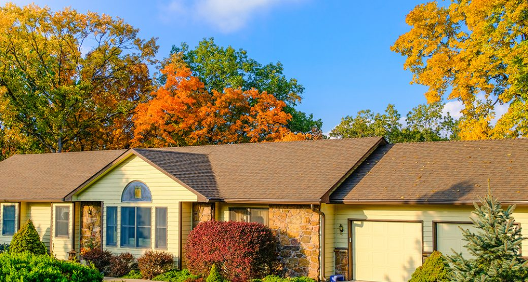 Autumn Maintenance Tips for Your Home and Property